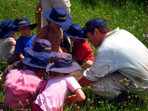 Showing children honey bees